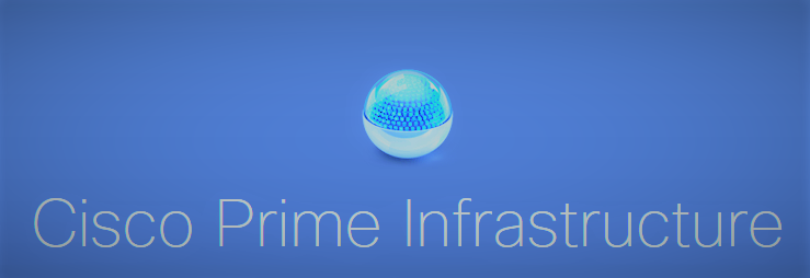 prime infrastructure türkçe